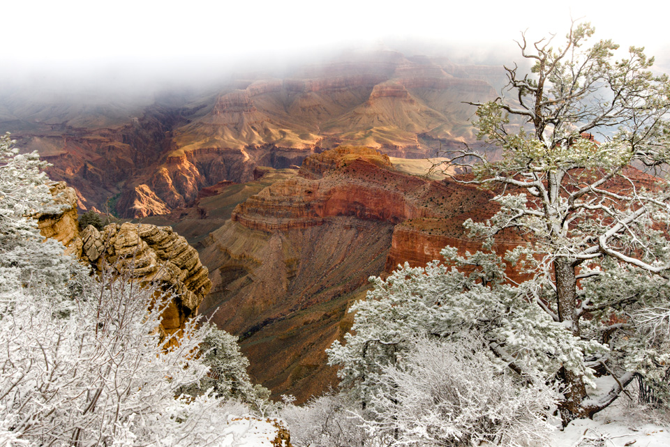 2016 SW Grand Canyon 03 12 3241 2