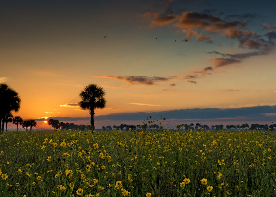 Central Florida's best landscape photo location