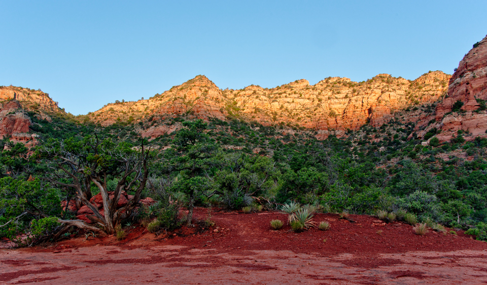 Red Rock in it's morning glory!