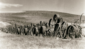 Palouse Photography Tips