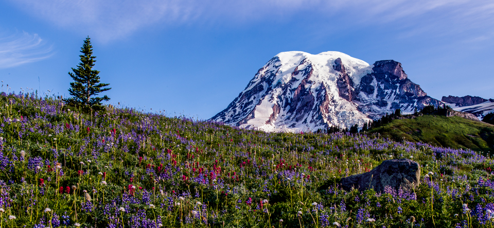 15 Hours at Mt. Rainier: A Photographic Sprint