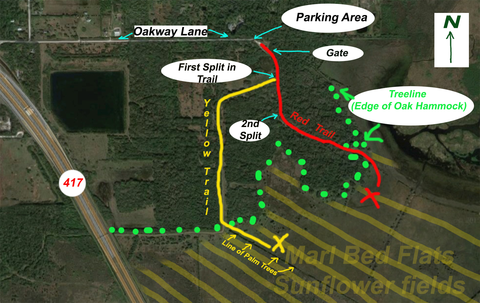 Lake Jesup Sunflower Wildflower Trail Map