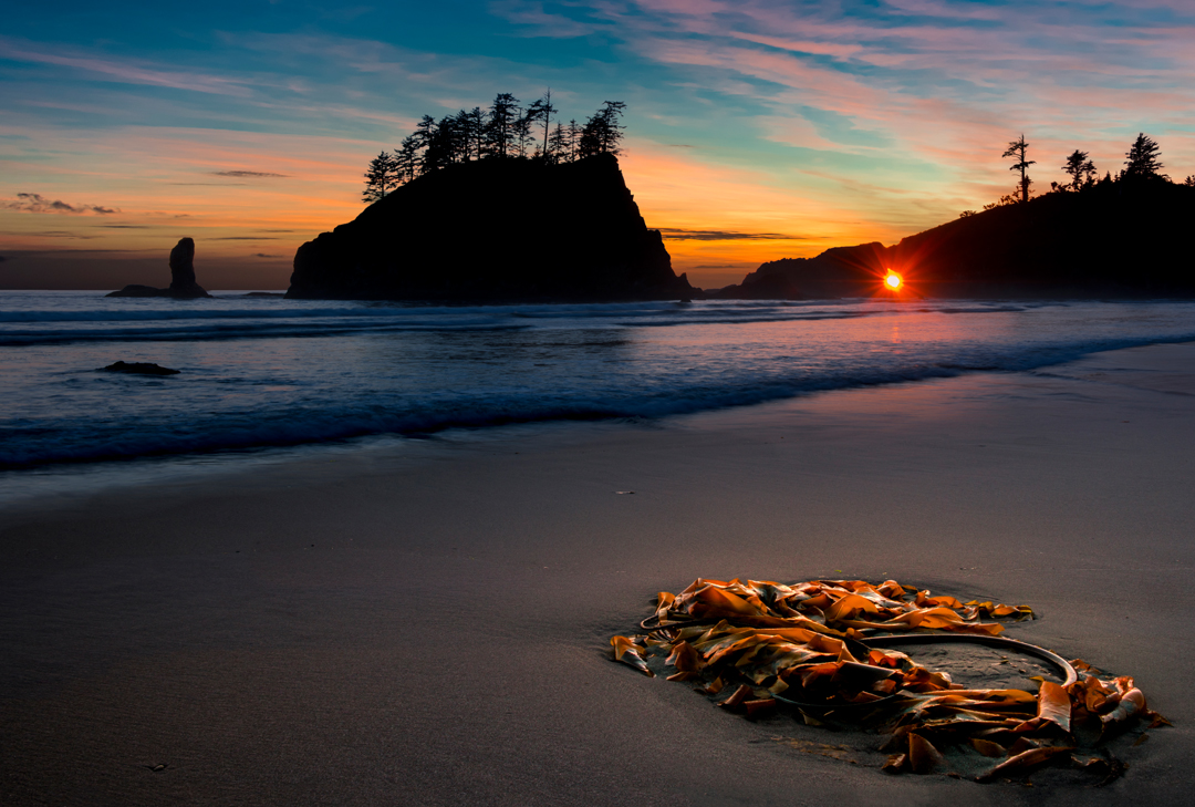 New Gallery of my Pacific Northwest Favorites