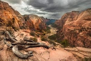 Zion's Angels Landing Summit