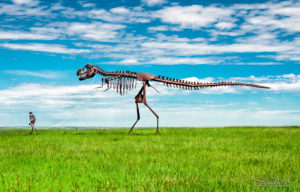 Skeleton Man Walking Skeleton T-Rex Dinosaur in South Dakota Jeff Stamer photograph Published in Highlights Magazine June 2019